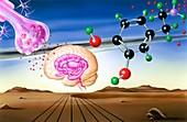 Dopamine brain chemistry,artwork