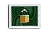 Secure tablet computer,conceptual image