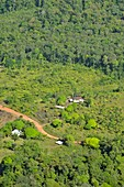 Deforestation,French Guiana