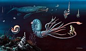 Cretaceous marine animals,artwork
