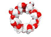 Beta-cyclodextrin molecule