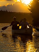 Tom Thomson Lake,Ontario,Canada