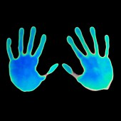 Hand prints on thermochromic paper
