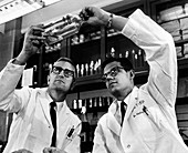 Rubella vaccine research