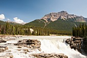 Athabasca Falls,Canada