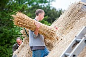 Barn being rethatched in Dorset