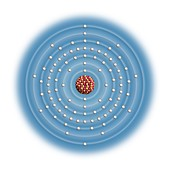 Uranium,atomic structure