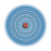 Californium,atomic structure