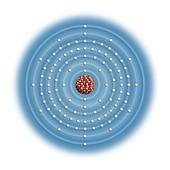 Seaborgium,atomic structure