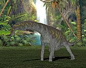 Argentinosaurus dinosaur,illustration