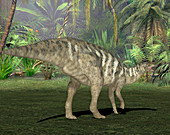 Edmontosaurus dinosaur,illustration