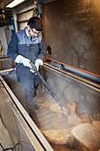 Sperm whale bone cleaning