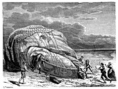 First balloon flight fatalities,1785