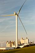 Wind turbine at Workington
