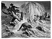 Pennsylvania oil rush,1859