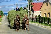 Rural Slovakia