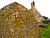 Lichen on gravestone in unpolluted air