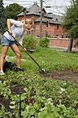 Volunteer weeding at an urban farm