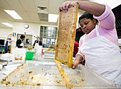 Girl uncapping honeycomb