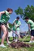 Volunteers planting trees,USA