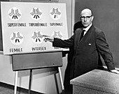 Stern lectures on intersex genetics,1959