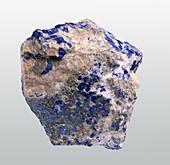 Lazurite crystals in calicite groundmass