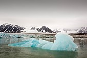 A glacier in Svalbard