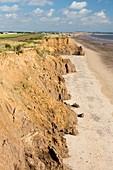 Collapsed coastal cliffs near Aldbrough