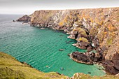 Kayakers in a cove near Mullion Cove