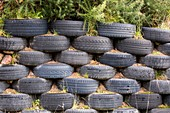 A recycled tyre wall in Scoraig