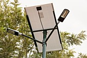 A solar street light in Bangalore,India