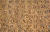 Cuneiform inscription,Persepolis,Iran