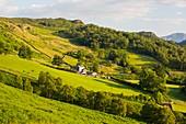 A hill farm above Borrowdale