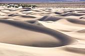 Mesquite flat sand dunes,Death Valley