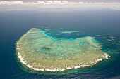 Coral reef,Great Barrier Reef