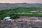 Vineyard in arid terrain