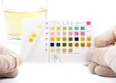 Urine home test kit