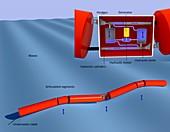 Pelamis wave power,diagram