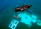 Autonomous underwater vehicle competition