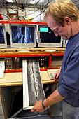 Marine geologist studying seafloor map