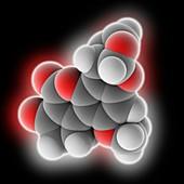 Aflatoxin B1 molecule