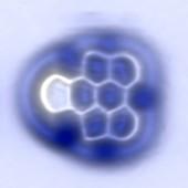 Aryne molecule,AFM