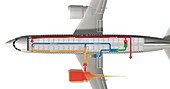 Passenger aircraft air circulation system