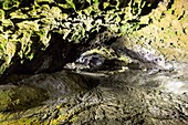 Lava tube near Sao Vicente