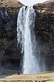 Spectacular waterfall in Iceland