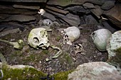 A human Inuit skull in a stone cairn