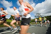 Runners in the Windermere Marathon,UK