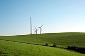 Wind turbines and pylon