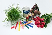 Items containing coloured pigments
