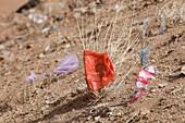 Drought and plastic rubbish,China
